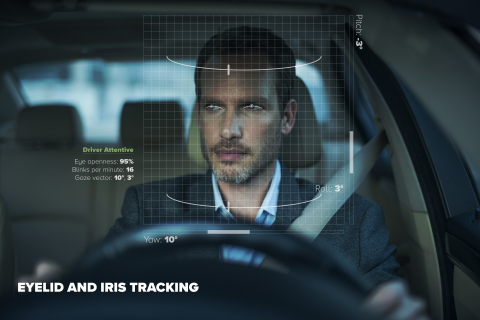 In-Car Sensing Technology (Photo: Business Wire)