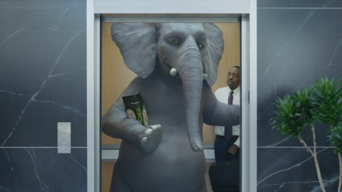 Ernie the Elephant trumpets $100,000 donation to Save The Elephants from Wonderful Pistachios to hel ...