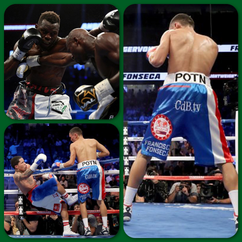 POTN Branding Unprecedented Exposure at Mayweather Fight (Photo: Business Wire)