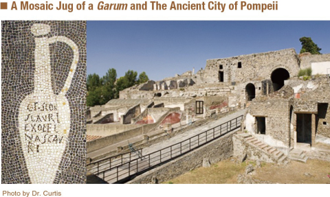 A Mosaic Jug of a Garum and The Ancient City of Pompeii (Graphic: Business Wire)