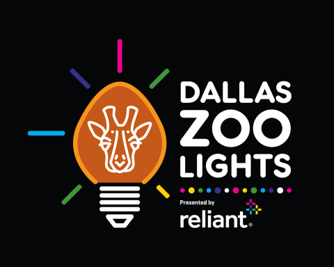 Introducing Dallas Zoo Lights A Bright New Holiday Celebration