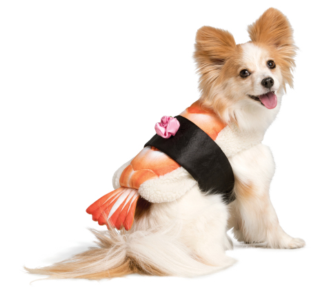PetSmart, the leading pet specialty retailer in North America, is launching its 2017 Fall and Halloween Collections. This year, pet parents will find hundreds of new, on-trend seasonal apparel and accessory items, Halloween costumes, beds, toys and treats to help pet parents celebrate this festive season with their pets. The collection is available now in all 1,500-plus PetSmart stores across the U.S. and Canada and online at petsmart.com and petsmart.ca. (Photo: Business Wire)