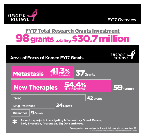 Susan G. Komen's 2017 Research Investment (Graphic: Business Wire)