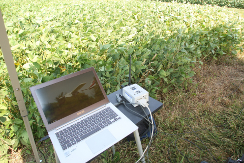Using the Aruba and HPE infrastructure, Purdue's College of Agriculture can enable researchers in th ...