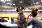 The Arizona Diamondbacks have clinched a spot in the National League Wild Card Game to be played tomorrow, Oct. 4, at Chase Field vs. the Colorado Rockies and for the first time ever, dog fans located in special Doggie Suites will attend a professional baseball playoff game. At the Oct. 4 game, dogs and their humans will enjoy all the excitement from the PetSmart Patio, which features Doggie Suites for a dog and four people, all-you-can-eat classic baseball fare, and doggie ice cream sundaes complete with kibble toppings, as well as indoor and outdoor dog parks to blow off steam at the seventh inning stretch.  The PetSmart Patio and the Dog Days of Summer ticket package was first launched in April 2016 at the first home game and expanded to 21 home games in the 2017 season. The permanent pet-friendly fixtures make Chase Field the most dog-friendly ballpark in America. (Photo: Business Wire)
