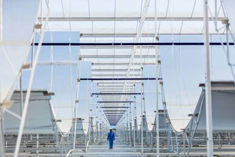 GlassPoint's solar EOR project with Petroleum Development Oman (PDO) will generate low-cost steam to boost oil production. (Photo: Business Wire)
