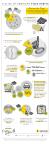 California Pizza Kitchen 2017 Pizza Survey (Graphic: Business Wire)