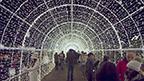 Highlights of what holiday revelers can expect at Enchant Christmas at Globe Life Park in Arlington, Texas.