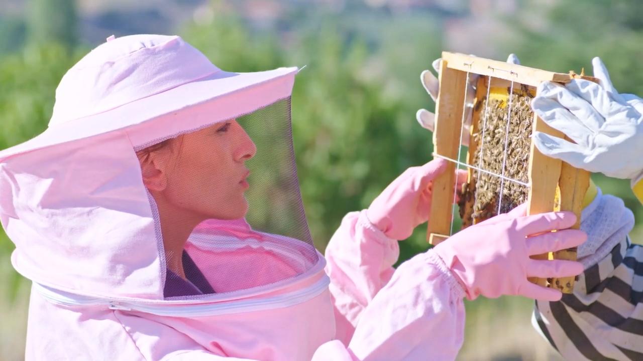 BeesVita Plus News Magazine Package