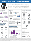 Hepatocellular Carcinoma Fact Sheet (Graphic: Business Wire)