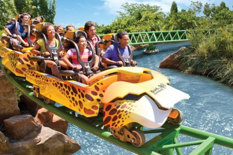 Busch Gardens Tampa Bay (Photo: SeaWorld Parks & Entertainment, Inc.)