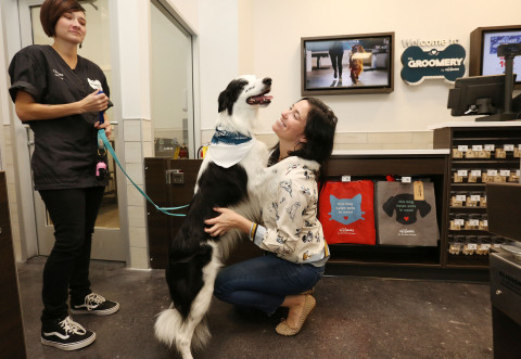 "Instagram pet celebrity, Pharrell of @pharrellandrosie (32.8K followers), is greeted by pet parent, Megan Rose, after getting groomed from head-to-toe at The Groomery by PetSmart™ in Manhattan's Upper West Side on Tues., Oct. 24. Pharrell and Rose got a sneak peek at The Groomery before it opens to the public on Wed., Oct. 25. The Groomery is a stand-alone salon that features classic pet grooming services and pampering ""Spaw"" treatments, as well as a self-service dog wash so pet parents can bond and bathe their own pups. The New York City location and an additional salon in Oak Park, Ill., a suburb of Chicago, both opened this week and are the first of five of The Groomery stores to open this fiscal year. Additional locations will include Scottsdale, Ariz., with two more locations expected to be announced soon. (Photo: Business Wire)"