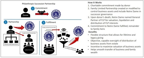 How it Works: Philanthropic Succession Partnership (PSP) (Photo: Business Wire)