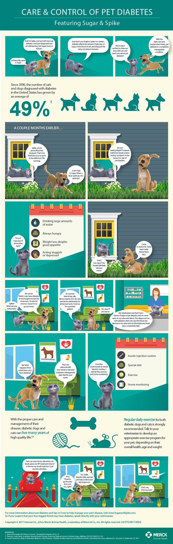 Merck Animal Health Introduces Care & Control of Pet Diabetes To ...