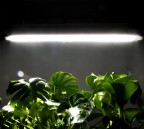 The new GroBar™ is the latest LED grow lighting solution from VividGro©. (Photo: Business Wire)