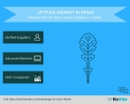 BizVibe's New B2B Networking Platform Helps Your Source from Lettuce Suppliers in Spain (Graphic: Business Wire)