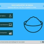 BizVibe's New B2B Networking Platform Helps You Source from Rice Suppliers in India