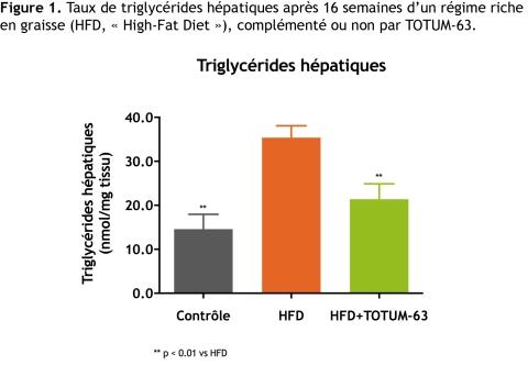 Figure 1. Taux de triglycérides hépatiques après 16 semaines d'un régime riche en graisse (HFD, « High-Fat Diet »), complémenté ou non par TOTUM-63.