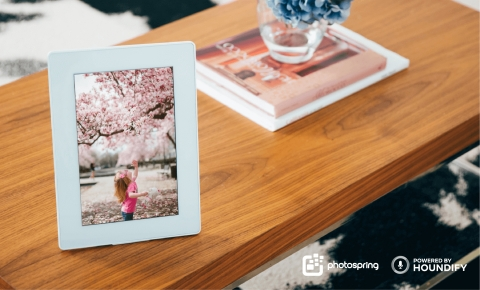 PhotoSpring Digital Photo Frame (Photo: Business Wire)