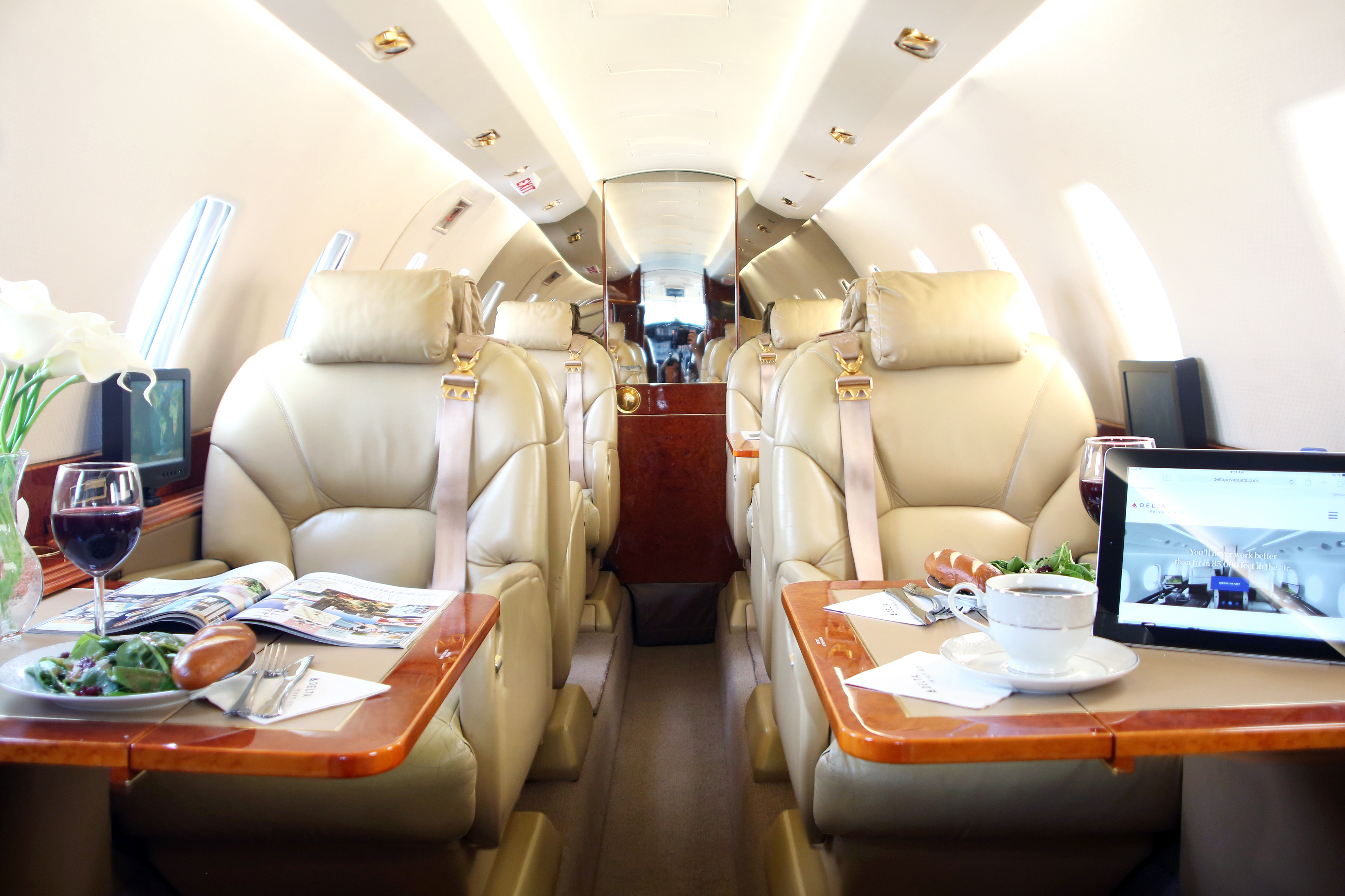 delta private jets launches new sky access online membership