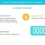 Key Findings of the Global Manganese Battery Market | Technavio
