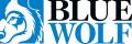 Blue Wolf Capital Partners LLC