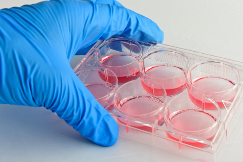 Aldevron, the world's leading contract plasmid manufacturing organization, has announced the immediate availability of an off-the-shelf version of pXX6-80, a common adeno-associated virus (AAV) helper plasmid. (Photo: Aldevron)