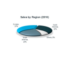 Sales by Region (2016) (Photo: Business Wire)