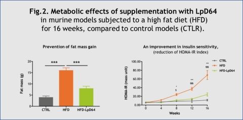 Fig.2. Metabolic effects of supplementation with LpD64 in murine models subjected to a high fat diet (HFD) for 16 weeks, compared to control models (CTLR). (Graphic: VALBIOTIS)