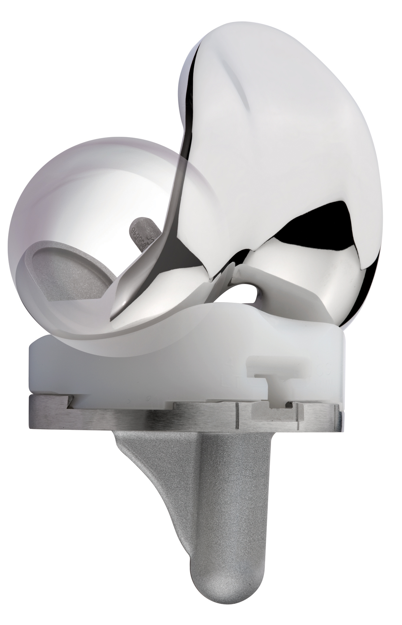 Samenvatting: MicroPort Orthopedics viert 20 jaar stabiliteit met ...