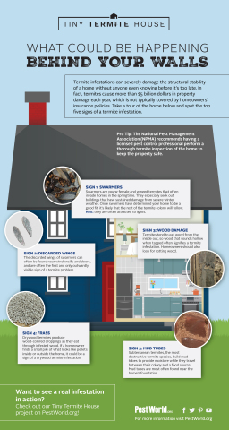 Take a tour of the home and spot the top five signs of a termite infestation. (Graphic: Business Wire)