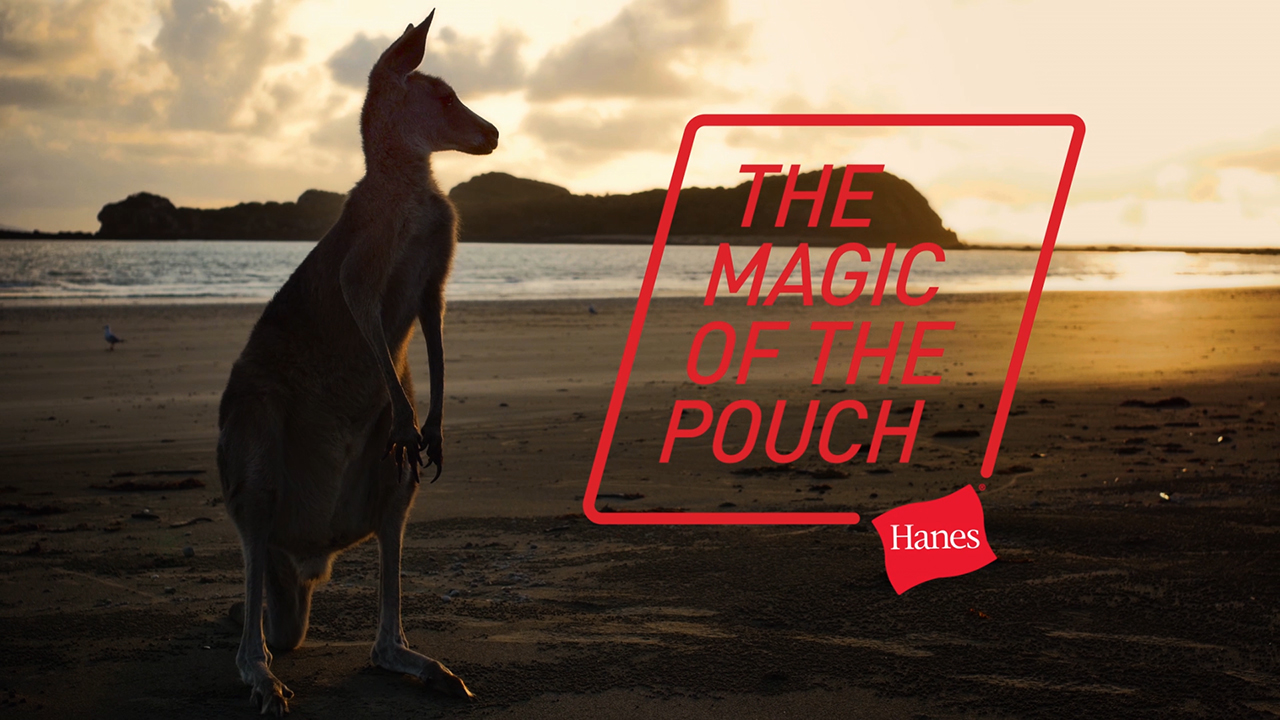 "A national television advertising campaign supporting Hanes Comfort Flex Fit launches Tuesday, March 13, and runs throughout the NCAA Men's Division I Basketball Tournament and 2018. The commercial features a kangaroo that showcases the ""magic"" of the pouch and the inspiration behind Comfort Flex Fit."
