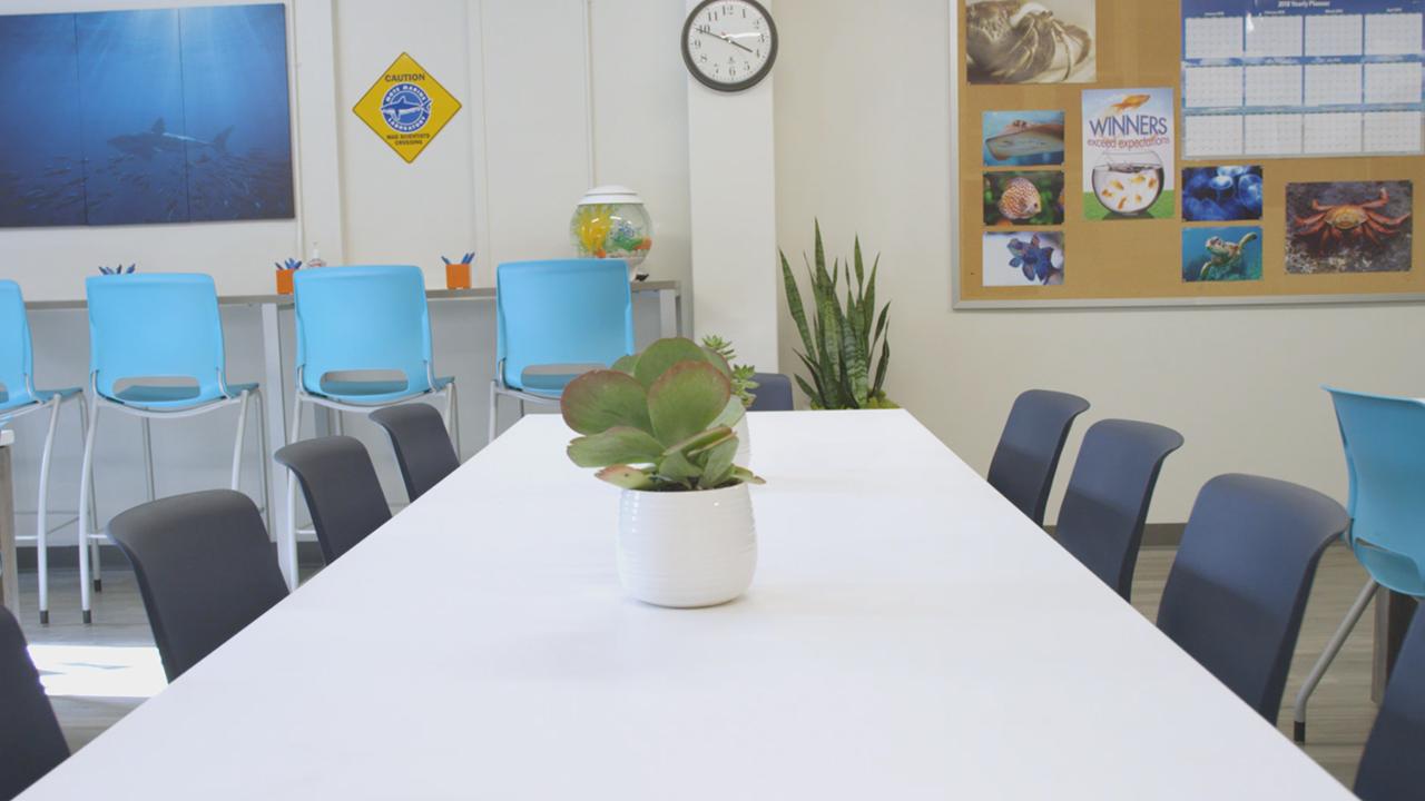 Staples completes breakroom transformation at Mote Marine Laboratory & Aquarium.