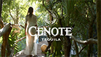 This short video, filmed by underwater cinematographer Denis Lagrange deep in the Yucatan Peninsula, debuted at the Cenote Tequila launch party in Miami last week.
