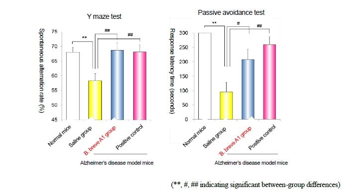 Morinaga Milk's New Probiotic Strain, Bifidobacterium breve A1, May