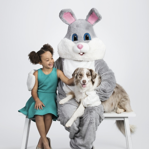 PetSmart, Inc., the leading pet specialty retailer in North America, announced today the availability of its Easter Pet Collection featuring toys and treats perfect for celebrating with pets. Pet pictures with the Easter Bunny will be available on Saturday, March 24, and Sunday, March 25, from 12-4 p.m. (local time; please check your local store for availability) at all 1,600-plus PetSmart stores across the U.S., Puerto Rico and Canada. (Photo: Business Wire)