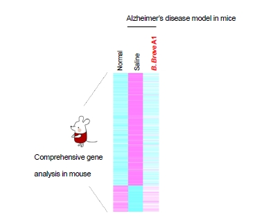 (Fig. 2) Comprehensive gene expression analysis of mouse hippocampus (Graphic: Business Wire)