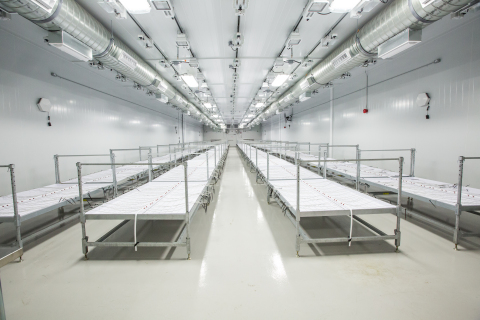 Zenabis holds one of the largest indoor medical cannabis cultivation footprints in Canada. (Photo: Business Wire)
