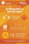 Alarming stats on the relationship between Americans and their Credit Reports. (Graphic: Business Wire)