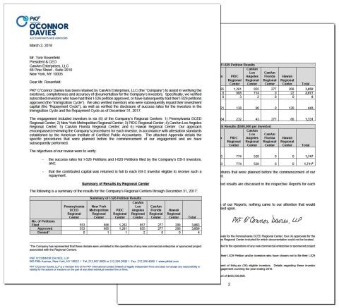 Audit report summary