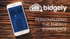 Bidgely applies Artificial Intelligence to help utilities personalize the energy experience for consumers around the world - bringing machine learning and data analytics to utility meter data to reveal hidden insights that benefit both utilities and consumers. (Photo: Business Wire)