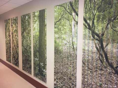 Pictured is one of many impressive pieces of artwork displayed throughout the eMoney Advisor's Providence office at 100 Westminster Street. (Photo: Business Wire)