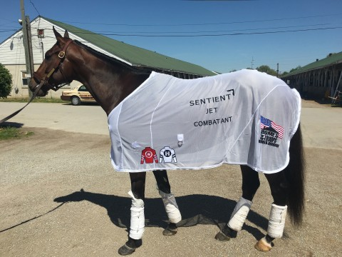 Sentient Jet to Support Combatant at the 2018 Kentucky Derby (Photo: Business Wire)