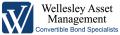 http://www.wellesleyinvestment.com
