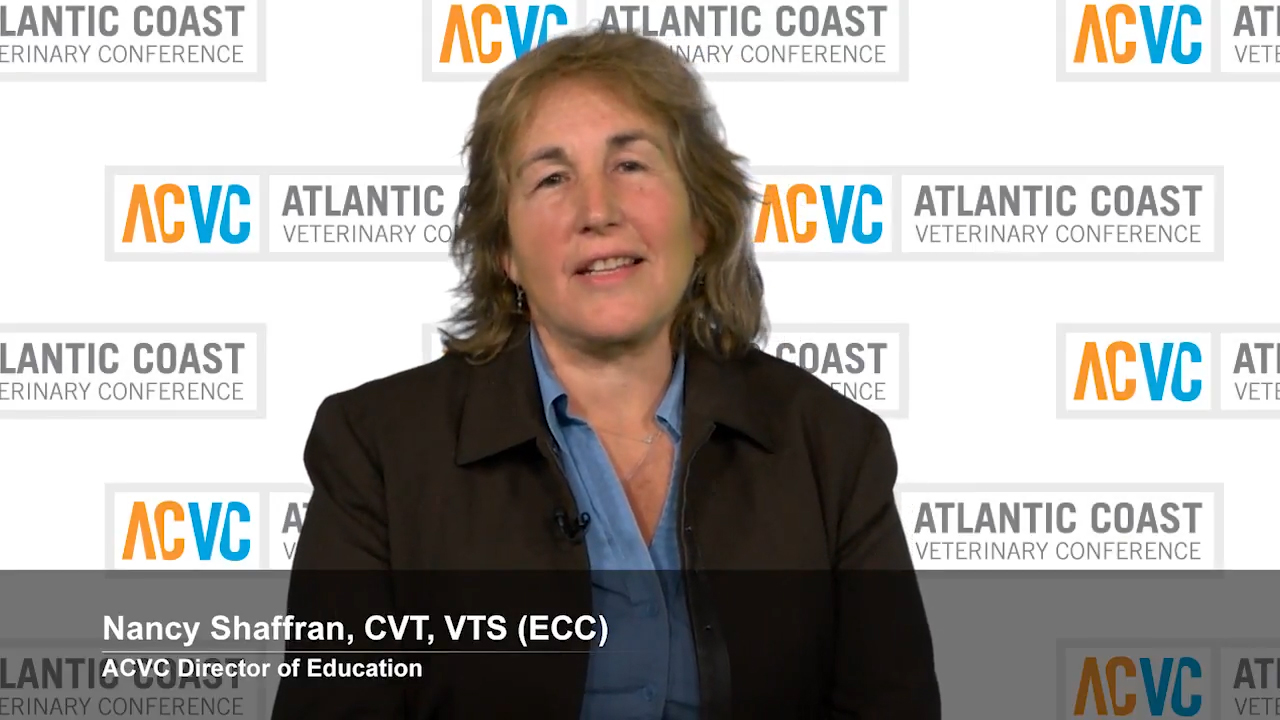 Nancy Shaffran On the Importance of the Atlantic Coast Veterinary Conference