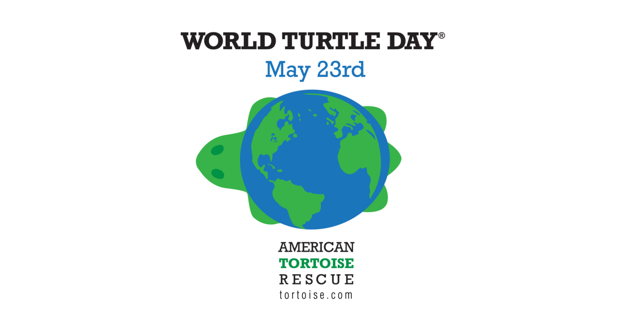 "American Tortoise Rescue ""Shellebrates"" World Turtle Day® on"