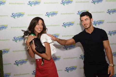 Danielle Jonas jokes about adopting a doggy playmate from Bideawee for her and Kevin's dogs by trying to sneak a pup out of the Swiffer #ShedHappens event on Wednesday, May 23, 2018, in New York. (Photo: Business Wire)