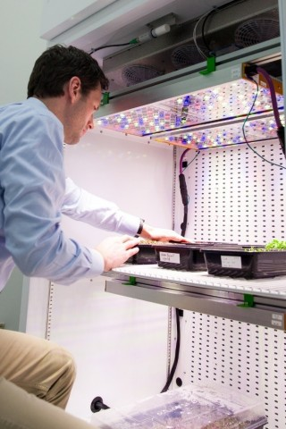Steve Graves, Strategic Program Manager of Urban & Digital Farming, Osram Innovation, Americas Region, observes microgreens in a growth chamber at NASA's Kennedy Space Center. NASA is using Osram's Phytofy RL connected horticulture research lighting system for ground research focused on production of salad-type crops for crews during space travel. (Photo: OSRAM)