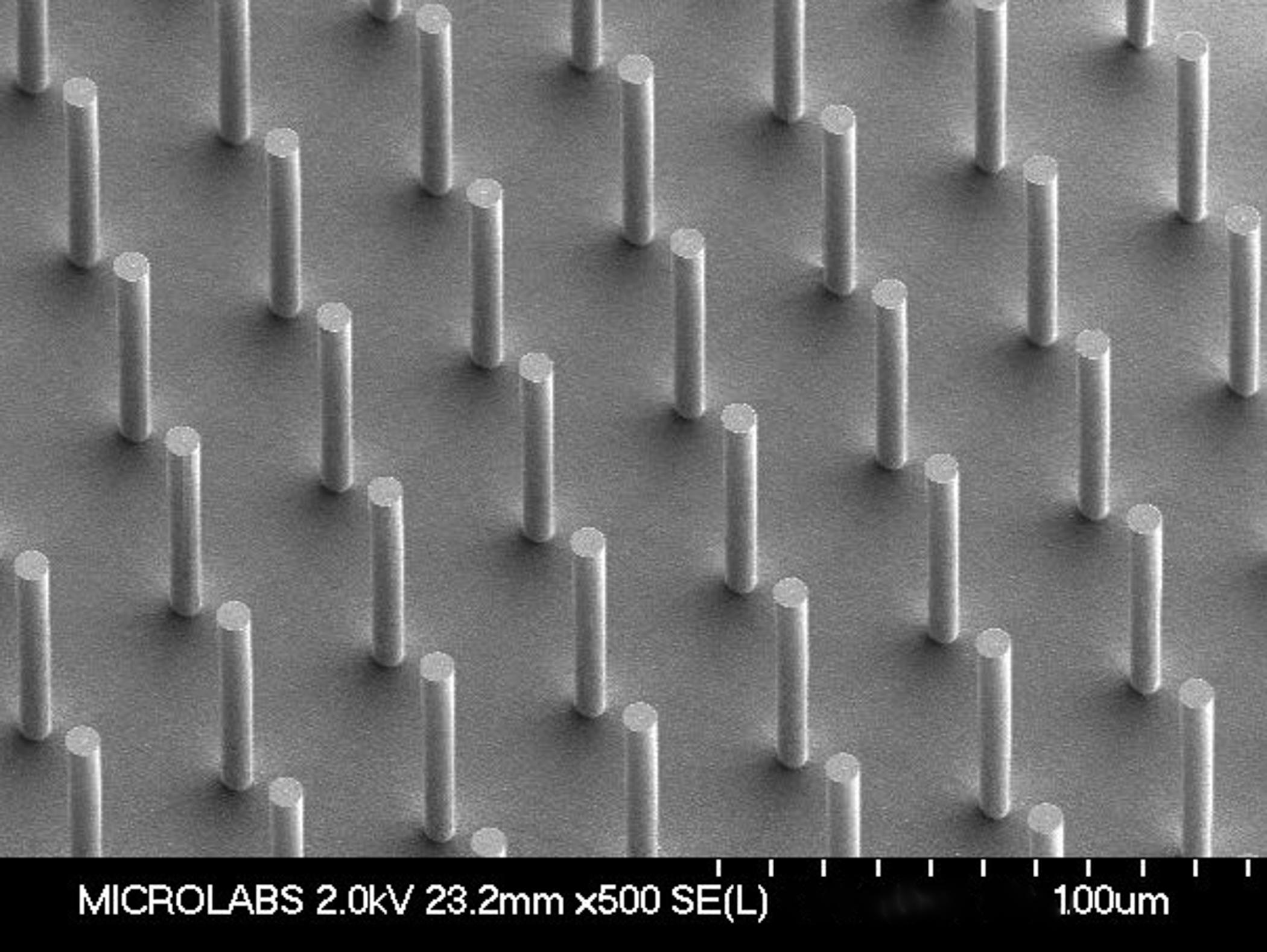 Sensera\'s MEMS Mimic Human Organs Through Bioengineering | Business Wire