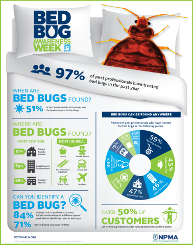 The 2018 Bugs Without Borders survey found that 97 percent of pest control professionals treated for bed bugs in the past year. (Graphic: Business Wire)